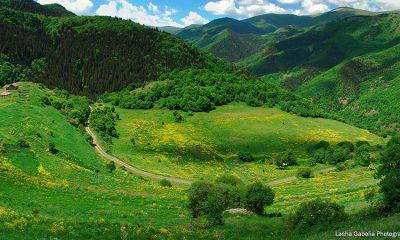 В Грузии появится новый Национальный парк Эрушети