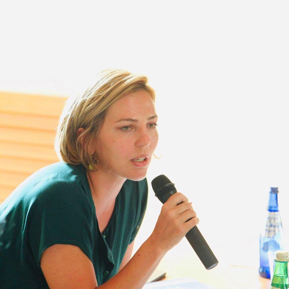 dolidze #новости Анна Долидзе, Высший совет юстиции, политическая партия