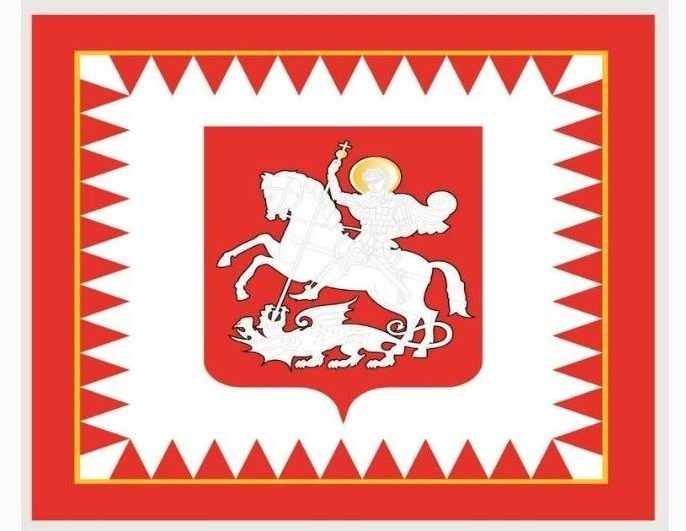 4 1 e1596207228811 #новости Саломе Зурабишвили, флаг