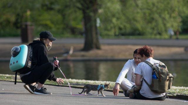 Молодые люди, девушка и кот в лондонском парке