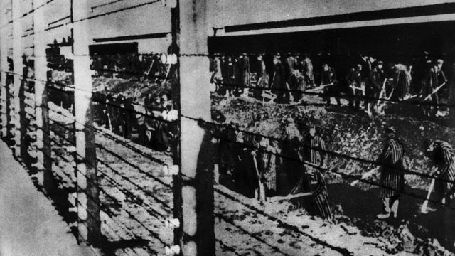 Behind an electric fence, prisoners of Auschwitz Concentration Camp digging a ditch. Auschwitz, 1940s