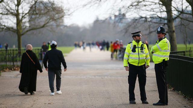 Лондонский парк
