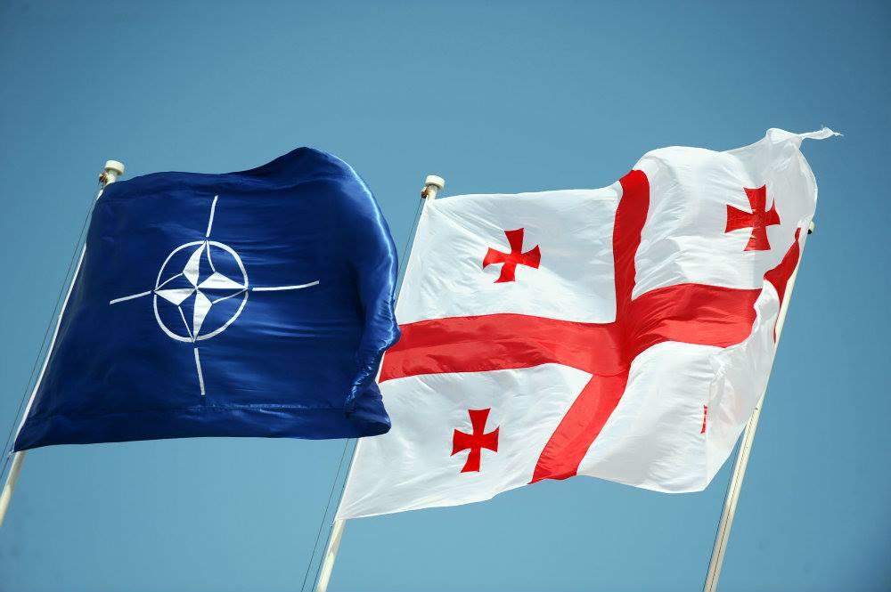 Georgia_NATO_Flags