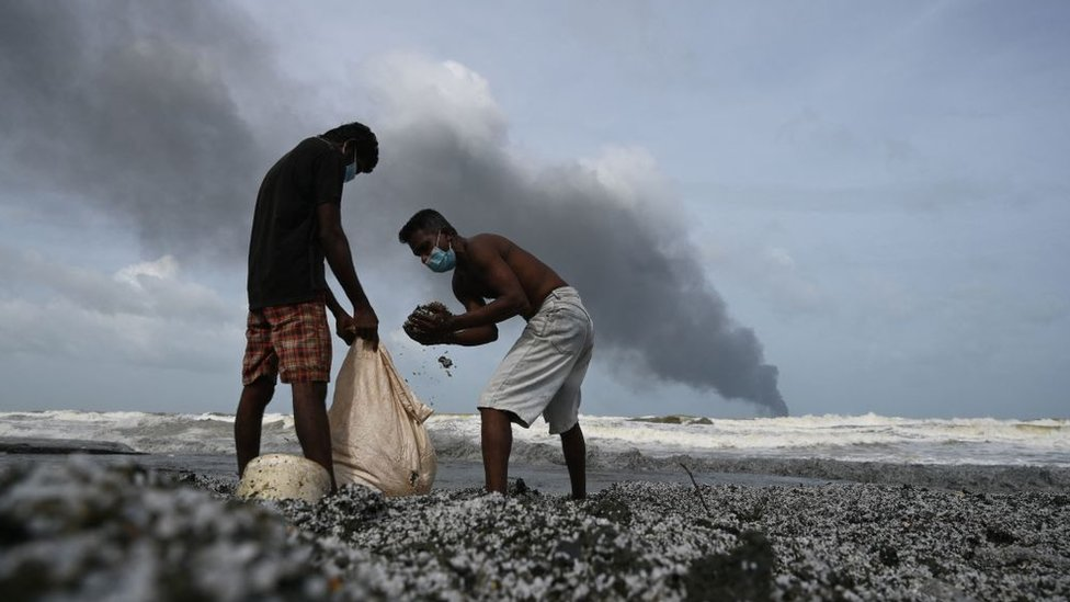 Экологическая катастрофа у берегов Шри-Ланки