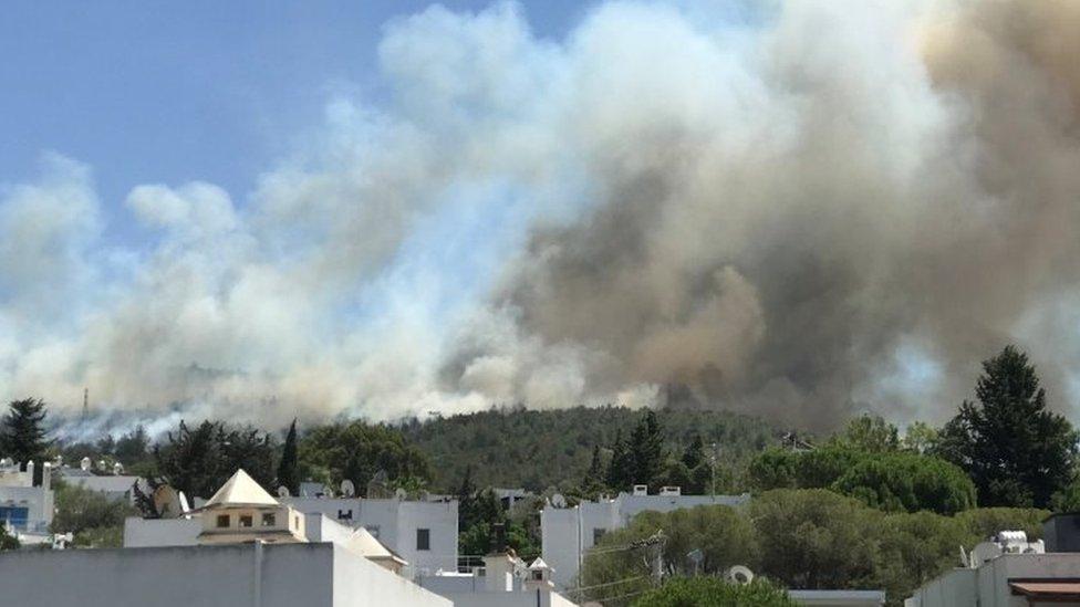 119689607 499fd7dd c11a 498d 861a 59d9308276df Новости BBC пожары в Турции