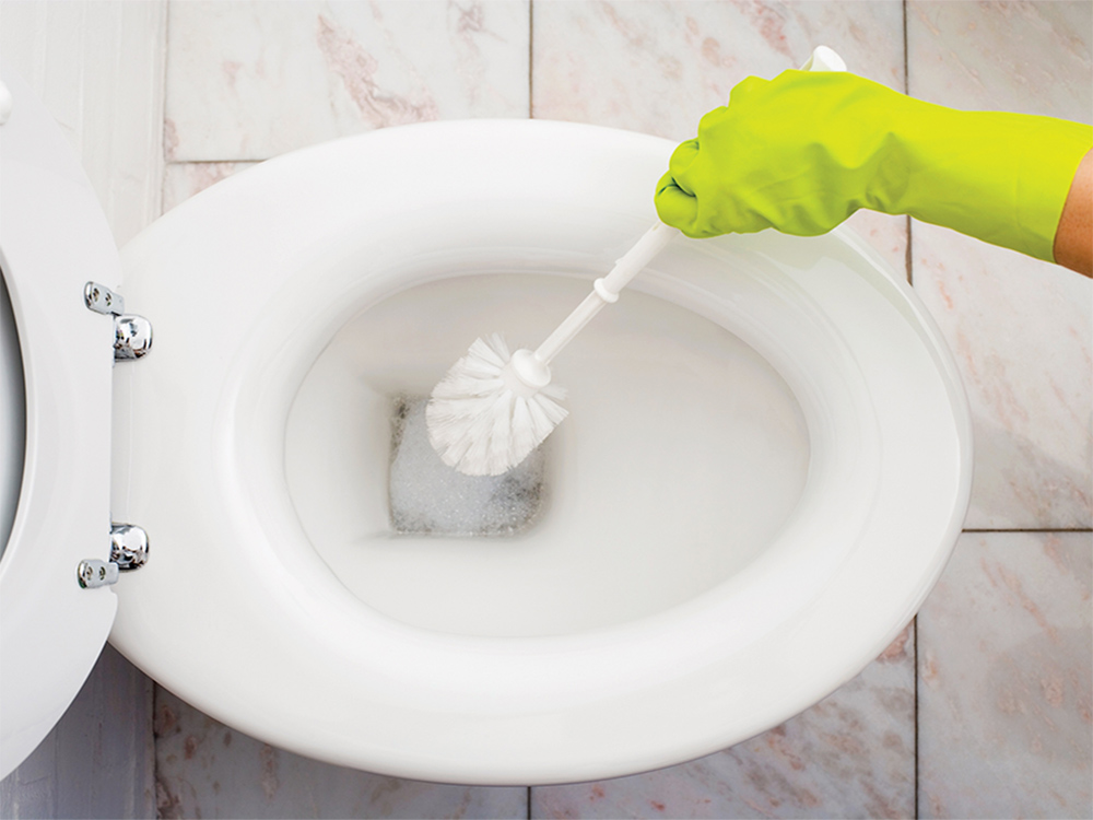 Clogged Toilet   What To Do? We Learn How To Eliminate The Blockage ...