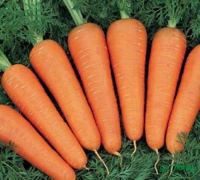 Хранение моркови на балконе зимой