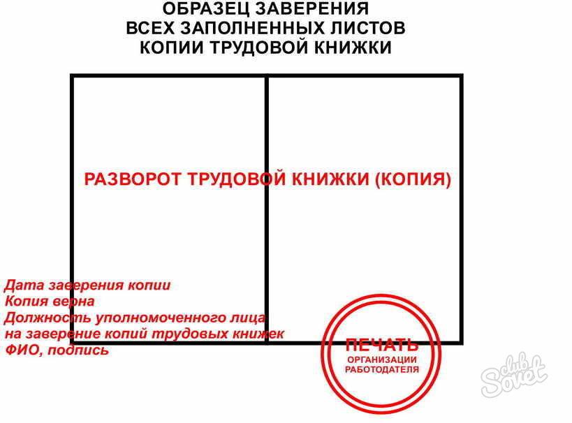 сколько действует копия трудовой книжки для кредита кредит без поручителей банк москвы