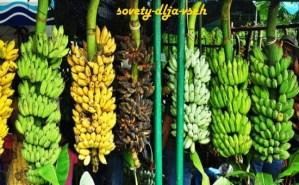 цвет бананов имеет значение