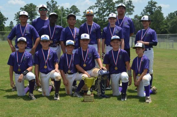 Bainbridge 12-under -star Baseball Team State Champions