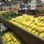美味しいマンゴーの見分け方と種類