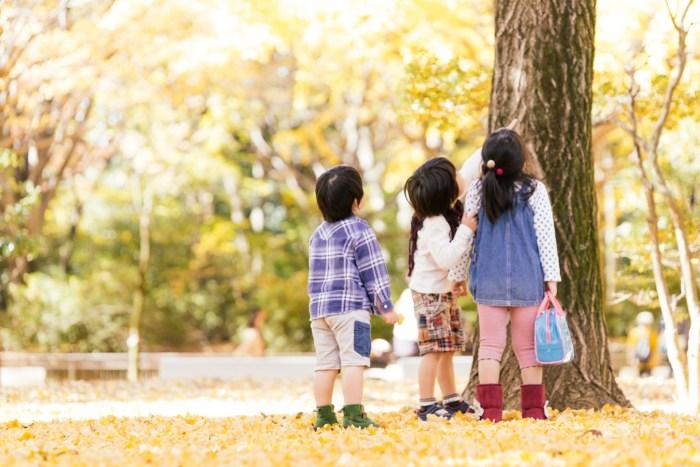 秋分の日の意味を子供にもわかりやすく説明