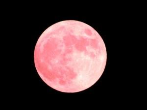 夏至の満月はストロベリームーン恋愛成就の力あり?