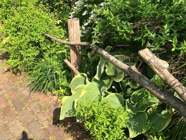 ターシャの庭が岐阜にあった?!