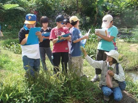 東山濕地和水生生物做朋友校外教學活動花絮