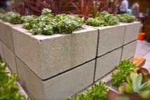 Ideas And Inspiration Modern Vegetable Garden Sow