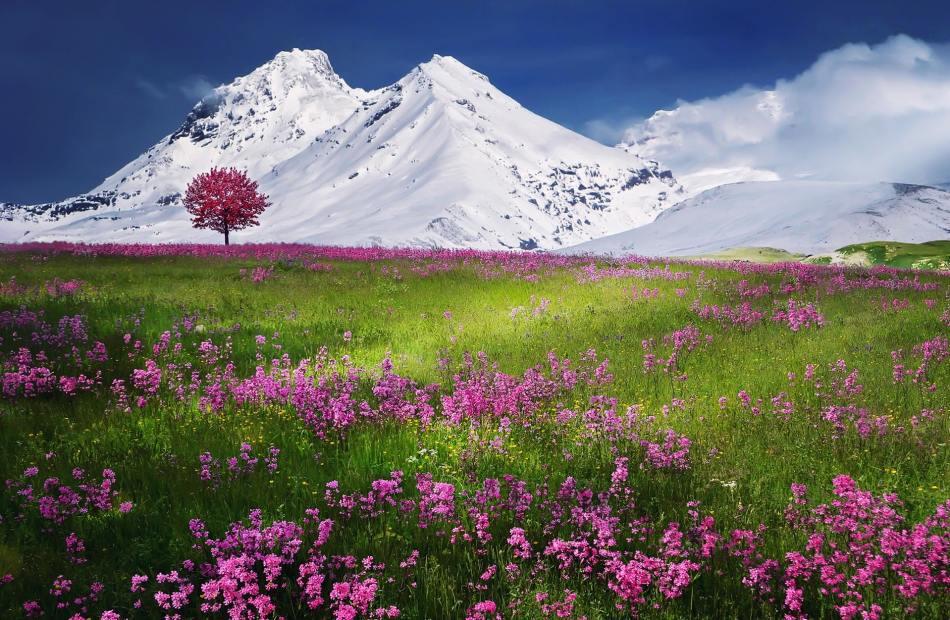 Rythm of nature