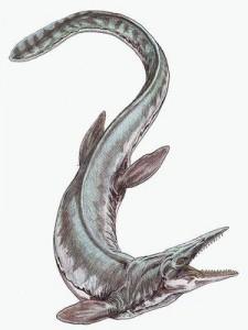 Tylosaurus@01