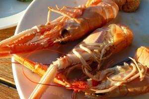 lobster-240558_1280