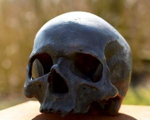 skull-and-crossbones-716492_640