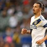 El Bologna sube la apuesta por Ibrahimovic: 8 millones por año y medio
