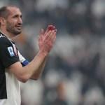 Chiellini va a renovar con la Juventus