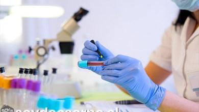 Photo of 8 MIL RESULTADOS DE PCR ENTREGARÁ MENSUALMENTE LABORATORIO MOLECULAR QUE ADQUIRIRÁ EL MUNICIPIO