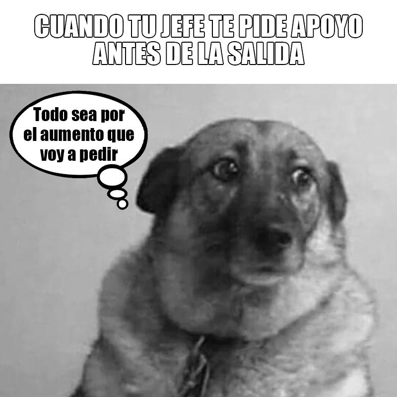 PEDIR AUMENTO