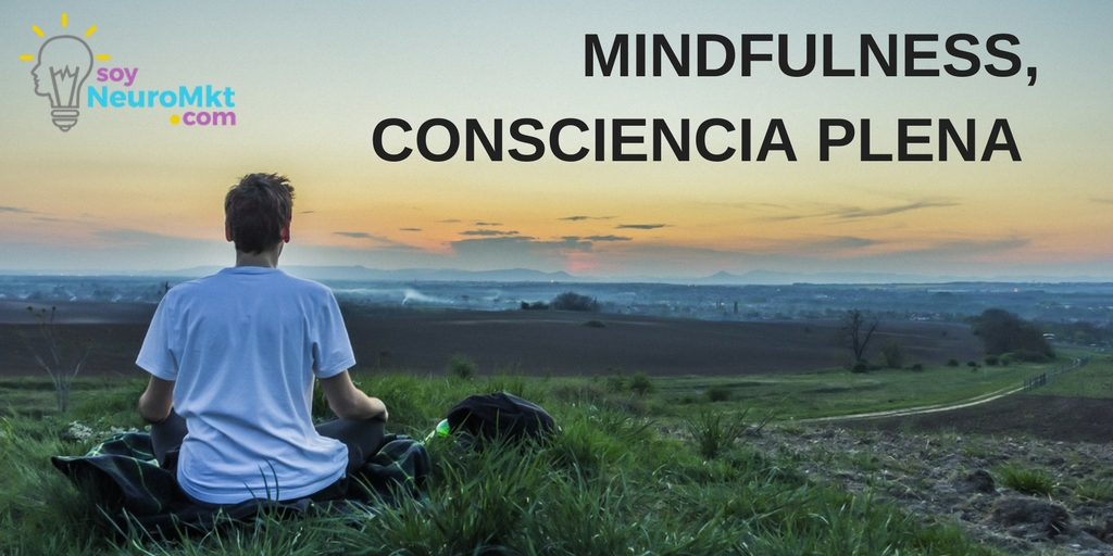 Mindfulness o Consciencia Plena