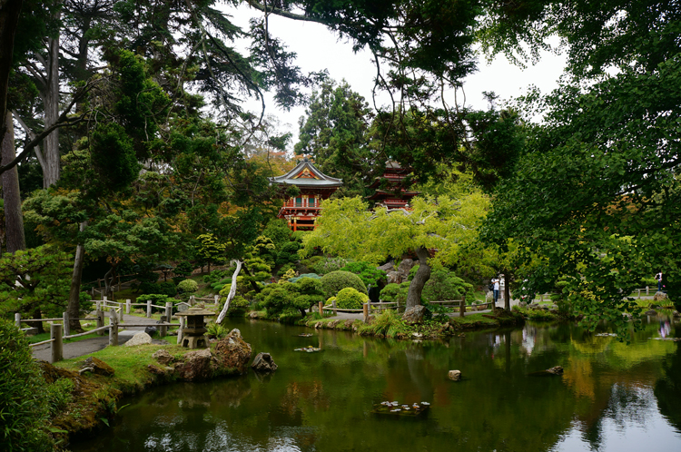Japanese Tea Garden Golen Gate Park SF