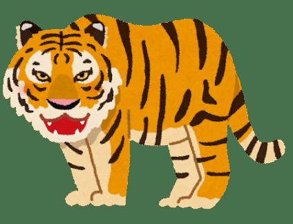 虎のイラスト