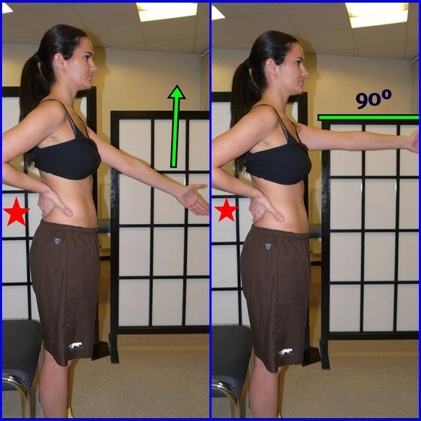 Fortalecer los abdominales: Tratamiento 1ª parte (músculos estabilizadores) (3/6)