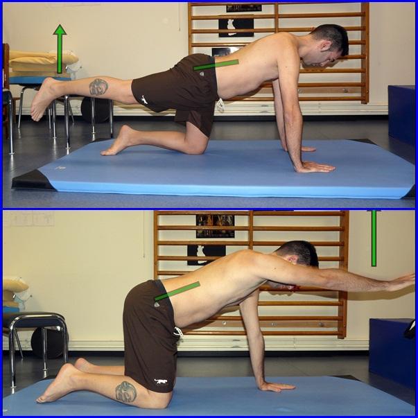 Fortalecer los abdominales: ejercicios globales de la faja abdominal (2/6)