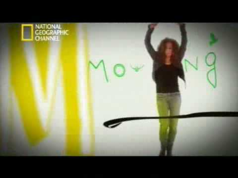 Macaco – Moving