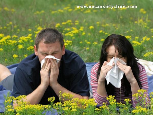 """""""Cómo aliviar alergias con soluciones naturales"""""""