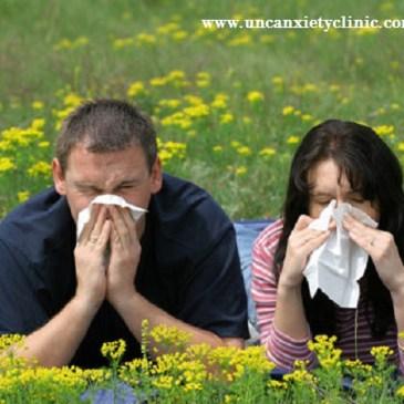 Cómo aliviar alergias con soluciones naturales