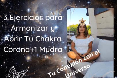 Chakra Corona Ejercicios