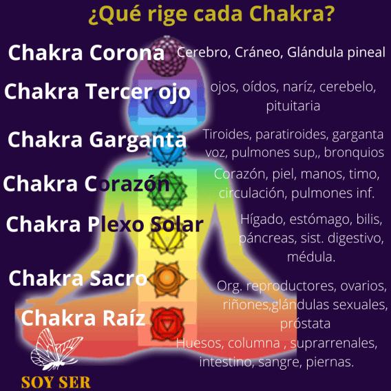 ¿Qué rige cada uno de tus chakras?