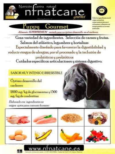 puppygourmet1