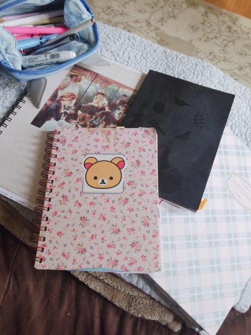 Bullet Journaling notebooks