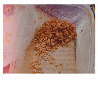 rice soyvvirgo.com