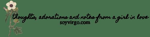 soyvirgo.com header image