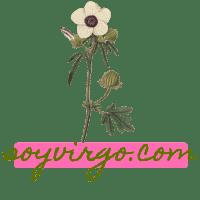 soyvirgo.com logo icon avi