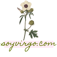 soyvirgo.com logo icon avi