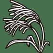 植物 ススキ(モノクロ)
