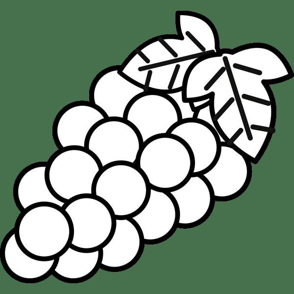 食品 ぶどう(モノクロ)