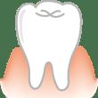 医療 歯(歯茎)(カラー)