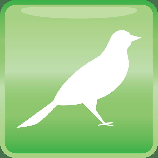 医療 鳥アイコン(カラー)