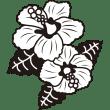植物 ハイビスカス(モノクロ)