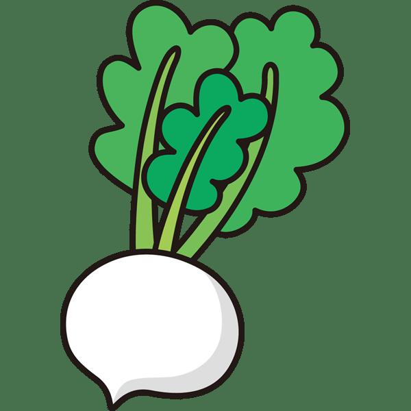 植物 スズナ(カラー)